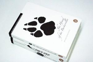 Holmes books